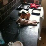 student accommodation case study clean